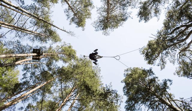 Big swing nuotykiu parkas Tarzanija img-2
