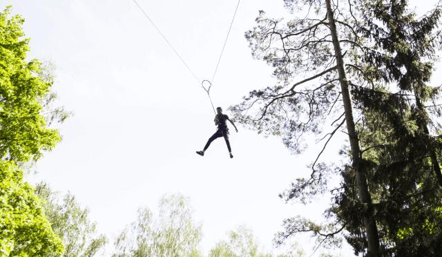 Laipynės medžiuose ir big swing 10