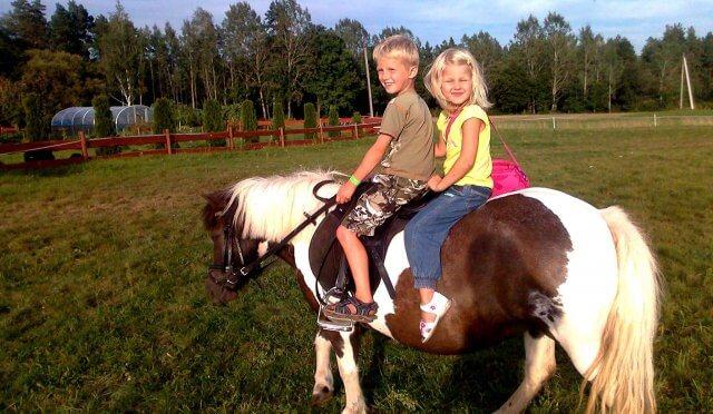 Fotosesija su žirgais, vaiku pramogos img-10