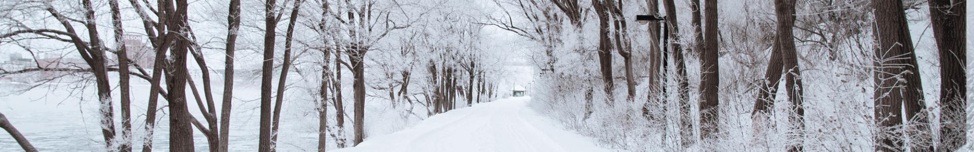 ziema nuotykiu parke